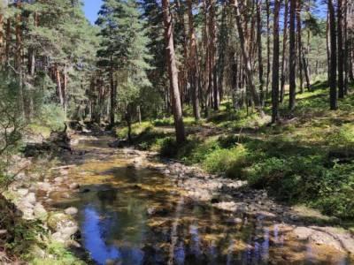 Pesquerías Reales-Valsaín,Río Eresma;visitas por madrid volcanes en cataluña paginas de viaje pa